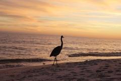Gulf Shores, AL 2019